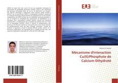 Bookcover of Mécanisme d'interaction Cu(II)/Phosphate de Calcium Dihydraté