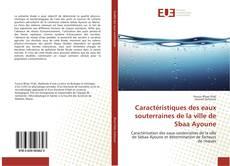 Borítókép a  Caractéristiques des eaux souterraines de la ville de Sbaa Ayoune - hoz
