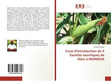 Bookcover of Essai d'introduction de 4 Variètés éxortiques de Maïs à MURHESA