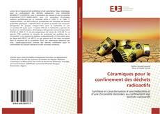 Portada del libro de Céramiques pour le confinement des déchets radioactifs