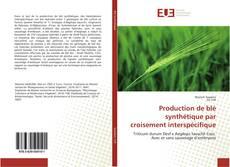Bookcover of Production de blé synthétique par croisement interspécifique