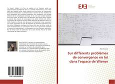 Portada del libro de Sur différents problèmes de convergence en loi dans l'espace de Wiener