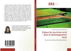 Couverture de Enjeux du tourisme rural dans le développement local