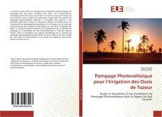 Pompage Photovoltaïque pour l'Irrigation des Oasis de Tozeur kitap kapağı