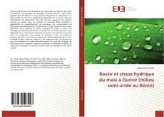 Copertina di Rosée et stress hydrique du maïs à Guéné (milieu semi-aride au Bénin)