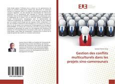 Gestion des conflits multiculturels dans les projets sino-camerounais的封面