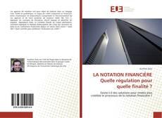 LA NOTATION FINANCIÈRE Quelle régulation pour quelle finalité ? kitap kapağı