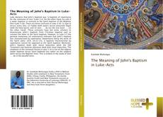 Bookcover of The Meaning of John's Baptism in Luke-Acts