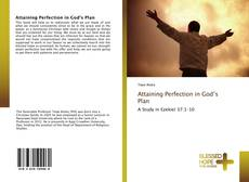 Bookcover of Attaining Perfection in God's Plan