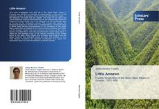 Bookcover of Little Amazon