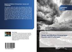 Copertina di Small and Medium Enterprises: Issues and Challenges