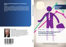 Bookcover of Enterprise Risk Management and Sarbanes-Oxley