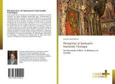Borítókép a  Peregrinar al Santuario haciendo Teología - hoz
