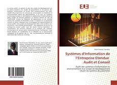 Bookcover of Systèmes d'Information de l'Entreprise Etendue Audit et Conseil