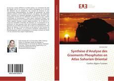 Couverture de Synthèse d'Analyse des Gisements Phosphates en Atlas Saharien Oriental