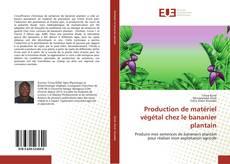 Couverture de Production de matériel végétal chez le bananier plantain
