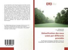 Bookcover of Détoxification des eaux usées par différents procédés