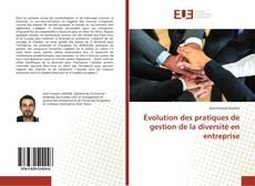 Bookcover of Évolution des pratiques de gestion de la diversité en entreprise