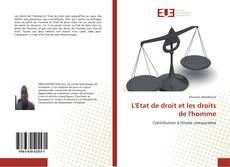 Capa do livro de L'Etat de droit et les droits de l'homme