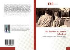Du Soudan au bassin tchadien的封面