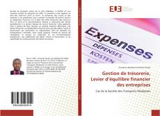 Bookcover of Gestion de trésorerie, Levier d'équilibre financier des entreprises