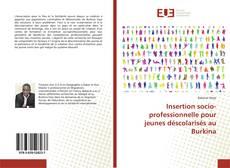 Insertion socio-professionnelle pour jeunes déscolarisés au Burkina的封面