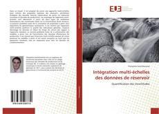 Copertina di Intégration multi-échelles des données de réservoir