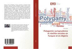 Polygamie: jurisprudence et réalités sociales en Turquie et en Algérie的封面
