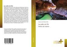 Bookcover of La calle sin fin