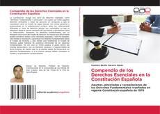 Compendio de los Derechos Esenciales en la Constitución Española kitap kapağı