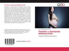 Familia y Gestante Adolescente kitap kapağı