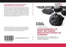 Обложка Sostenibilidad y el Valor del Capital Natural del Carbón en Colombia