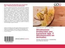 Bookcover of Micotoxinas Producidas por Fusarium spp. Y Micotoxicosis en Animales