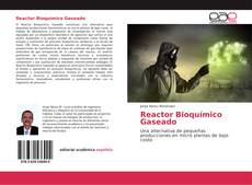 Bookcover of Reactor Bioquímico Gaseado