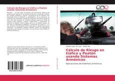 Cálculo de Riesgo en tráfico y Peatón usando Sistemas Armónicos的封面