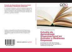 Estudio de Aprendizaje Organizacional en Grandes y Medianas Empresas的封面