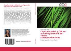 Capital social y OR en la configuración de redes socioproductivas的封面