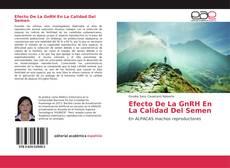 Bookcover of Efecto De La GnRH En La Calidad Del Semen