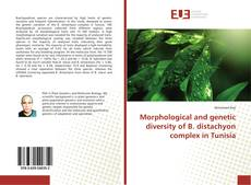 Bookcover of Morphological and genetic diversity of B. distachyon complex in Tunisia
