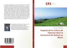Couverture de Impacts de la culture de l'igname dans la Commune de Ouèssè au Bénin
