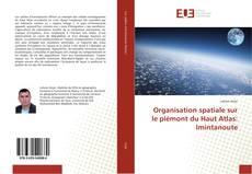 Portada del libro de Organisation spatiale sur le piémont du Haut Atlas: Imintanoute