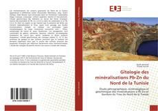 Buchcover von Gîtologie des minéralisations Pb-Zn du Nord de la Tunisie