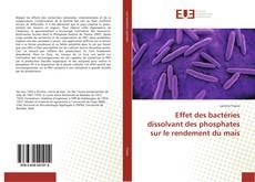 Portada del libro de Effet des bactéries dissolvant des phosphates sur le rendement du maïs