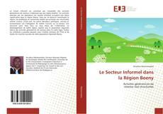 Couverture de Le Secteur Informel dans la Région Boeny