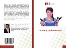 La mixité professionnelle kitap kapağı