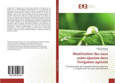 Buchcover von Réutilisation des eaux usées épurées dans l'irrigation agricole