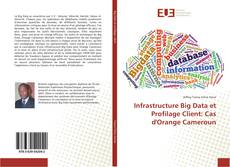 Bookcover of Infrastructure Big Data et Profilage Client: Cas d'Orange Cameroun