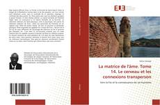 Bookcover of La matrice de l'âme. Tome 14. Le cerveau et les connexions transperson