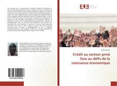 Bookcover of Crédit au secteur privé face au défis de la croissance économique
