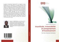 Capa do livro de Incertitude, irréversibilité et comportement d'investissement